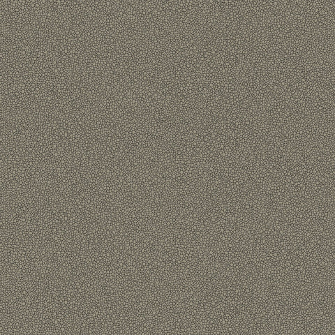 Cole and Son Wallpapers Curio Goldstone Black / Gilver Pebble Wallpaper