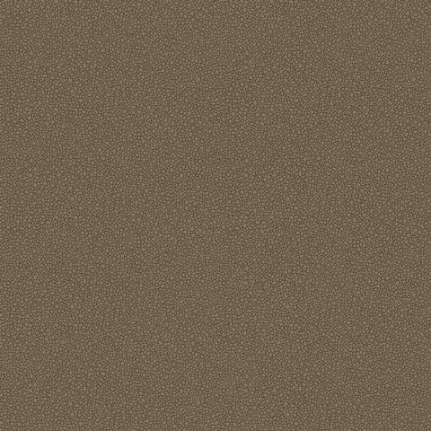 Cole and Son Wallpapers Curio Goldstone Gold / Ebony Pebble Wallpaper