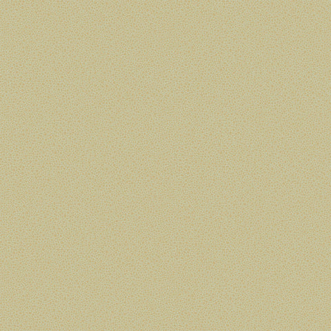 Cole and Son Wallpapers Curio Goldstone Pale Green / Gold Pebble Wallpaper