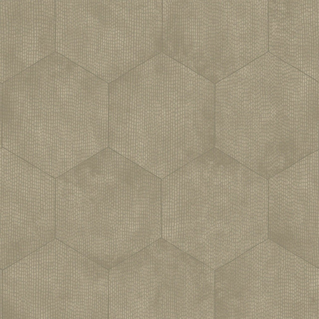Cole and Son Wallpapers Curio Mineral Pewter Hexagon Wallpaper