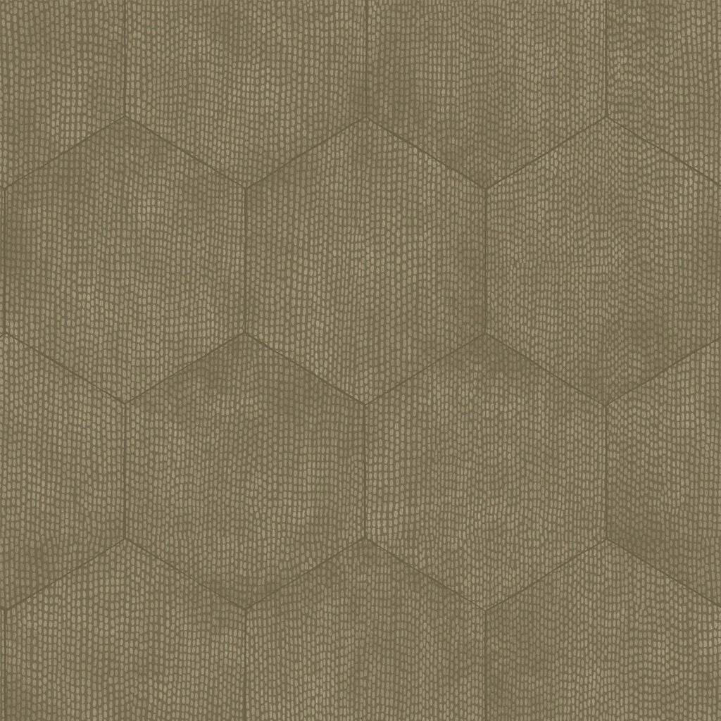 Cole and Son Wallpapers Curio Mineral Taupe Hexagon Wallpaper