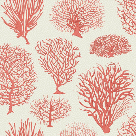 Cole and Son Wallpapers Curio Seafern Coral Trees Wallpaper