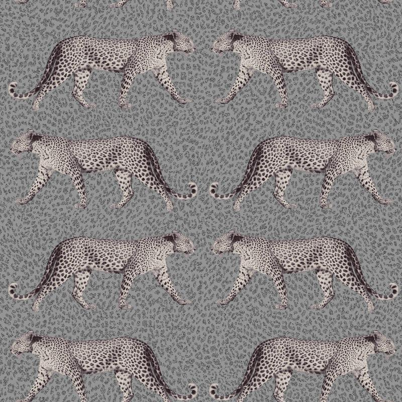 Charcoal Grey Leopard Wallpaper