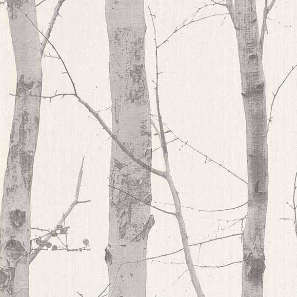 Paradisio White Grey Birch Tree Wallpaper