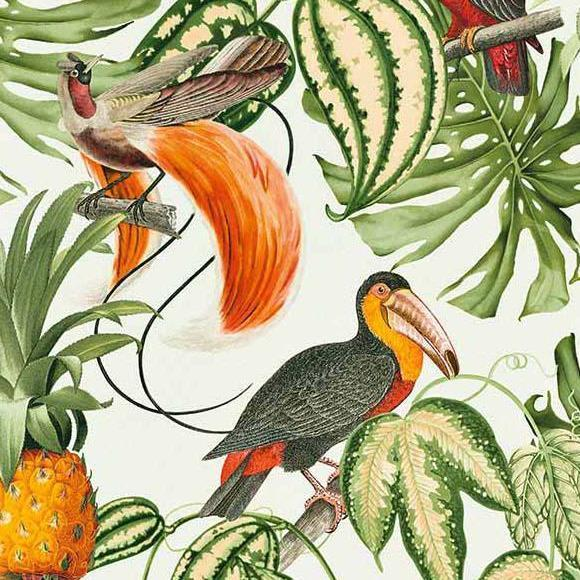 Erismann Wallpapers Paradisio White / Multi Tropical Birds Wallpaper