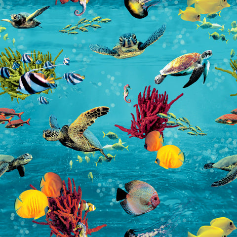 Tropical fish and turtles on a blue sea themed wallpaper
