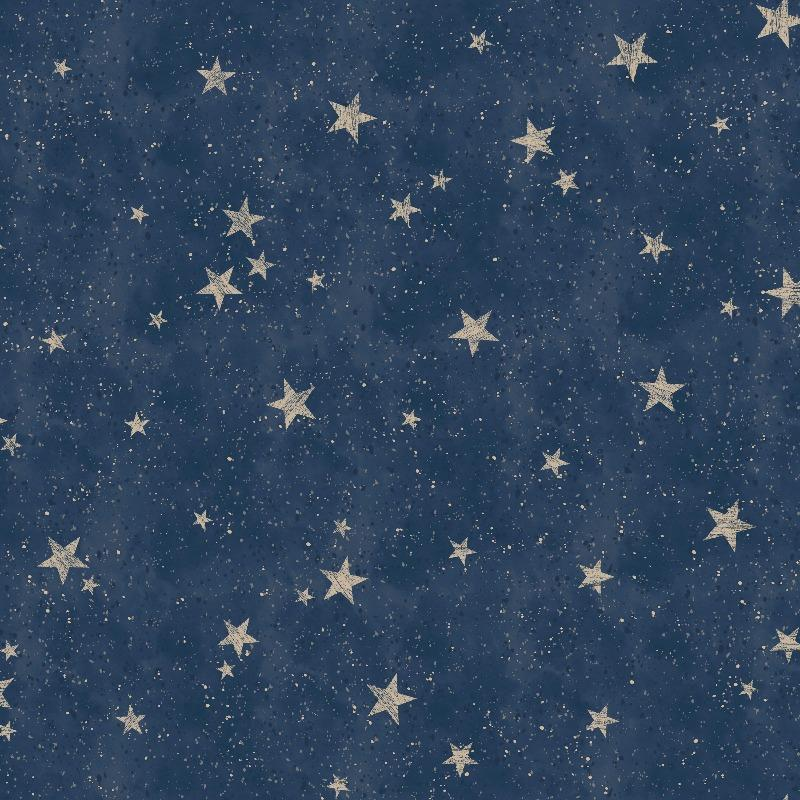 Starlight Stars Navy Blue / Gold Wallpaper