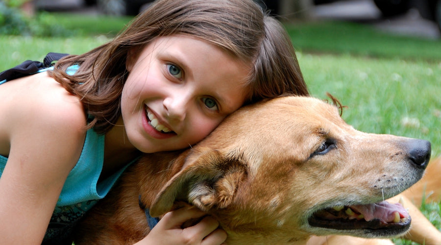 3 Easy Ways to Involve Kids of All Ages in Dog Training