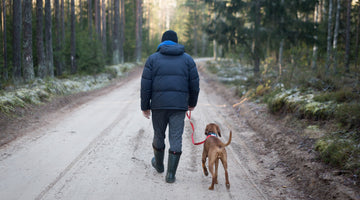 6  Tips for Finding (and Keeping) the Right Dog Walker You'll Wish You'd Known Sooner