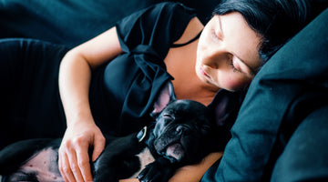 Why Some Dogs Like to Cuddle and Others Don't
