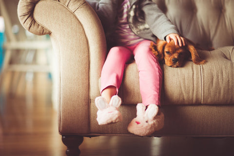 dog on couch with little girl
