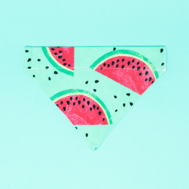 Watermelons Dog Bandana - The Woof Warehouse