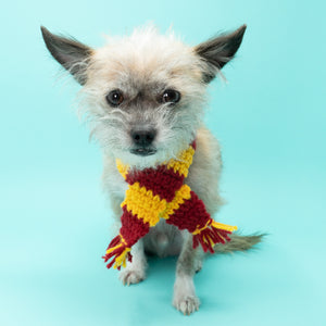 Striped Wizard Dog Scarf (Inspired by Harry Potter) - The Woof Warehouse