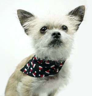 Christmas Holiday Dog Bandana