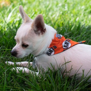 Dog Bandana- Sports Teams - The Woof Warehouse