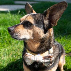 Over the Collar Dog Bow Ties - The Woof Warehouse