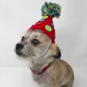 Dog Party Hat - The Woof Warehouse