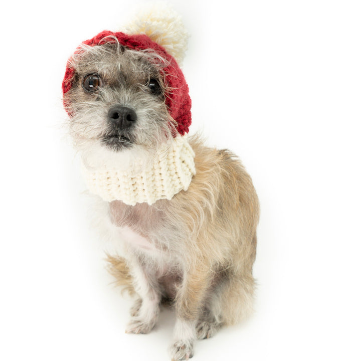 Dog Santa Hat - The Woof Warehouse