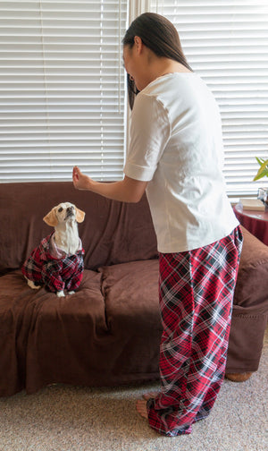 Pajama Lounge Wear Pants - The Woof Warehouse