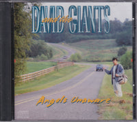 DAVID & THE GIANTS - ANGELS UNAWARE (*NEW-CD, 1995) Classic CCM / Christian Rock