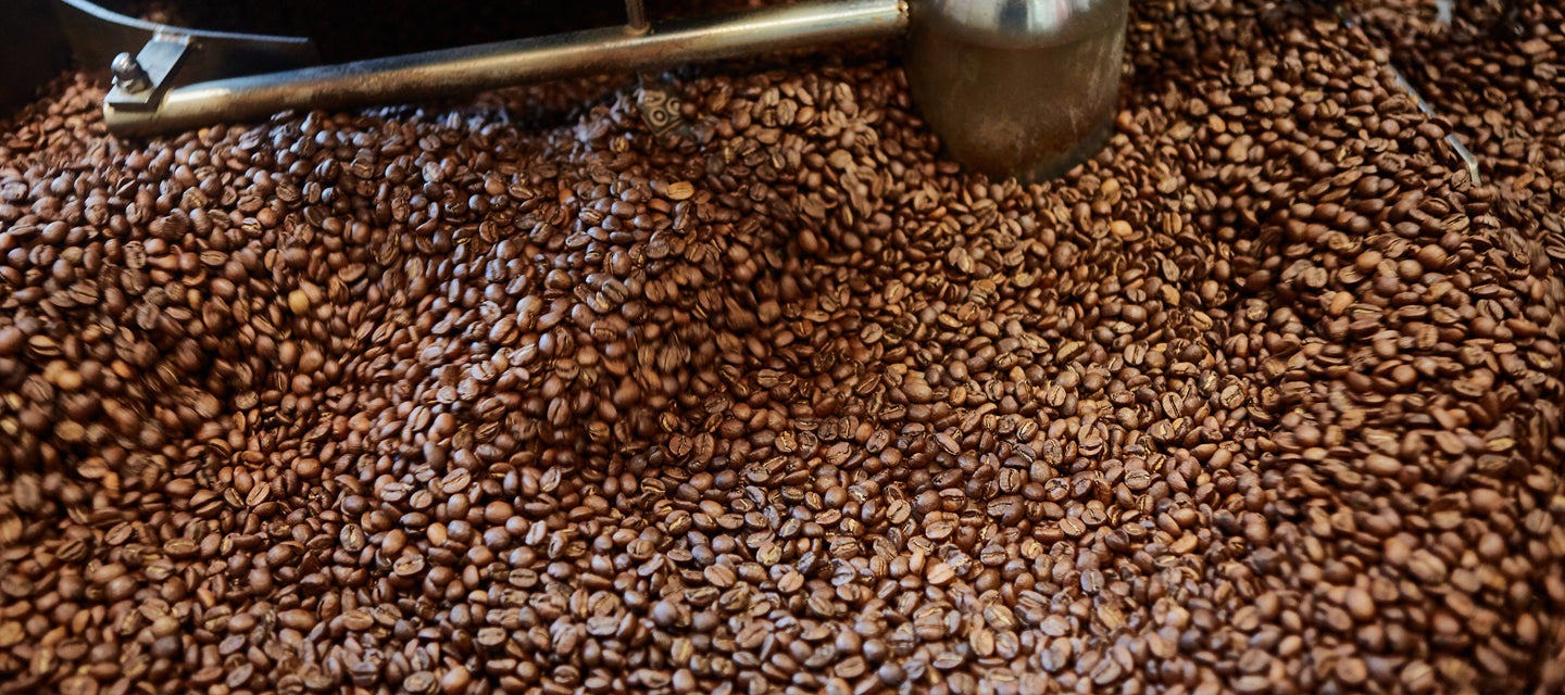 Locally roasted, proudly served artisan coffee – Ace Coffee