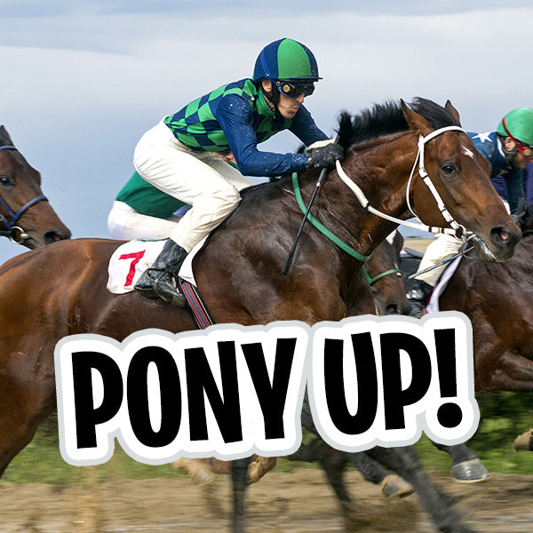 Box of Fun: Pony Up!