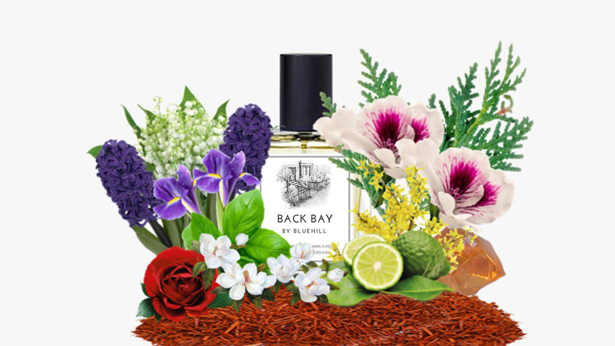 Back Bay - Bluehill Fragrances