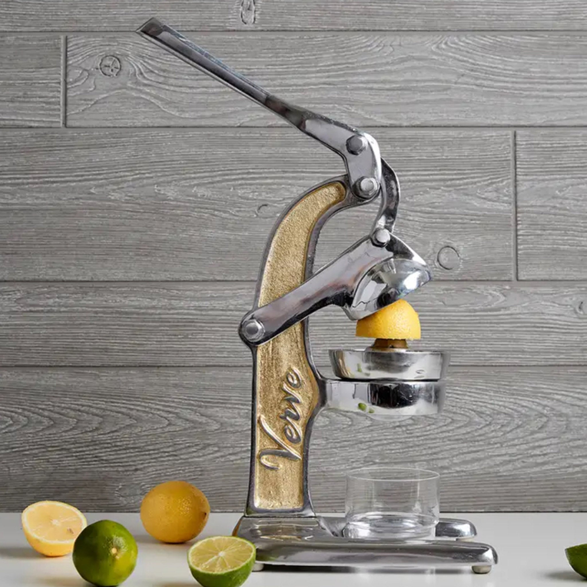 Authentic Citrus Juicer