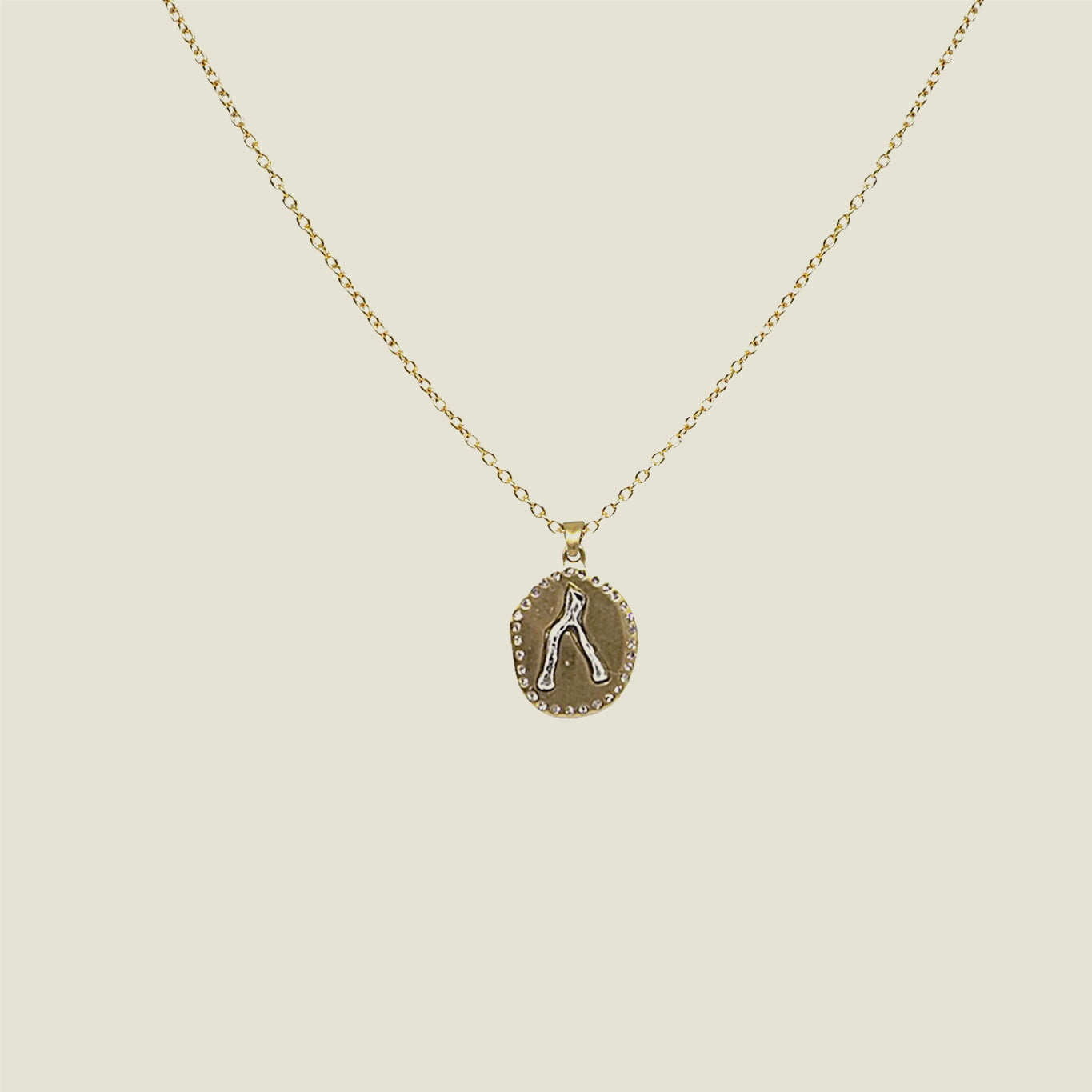 Gold Wishbone Necklace - Blackbird General Store