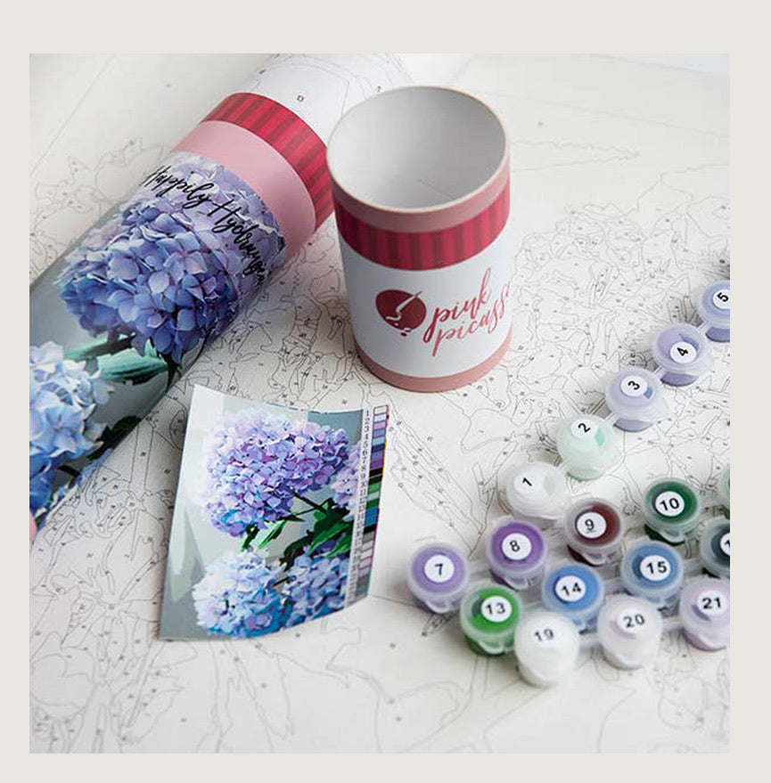 Paint by Numbers Kit - BACK IN STOCK - Blackbird General Store