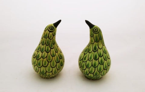 mexican salt and pepper shaker set folk art kiwi bird