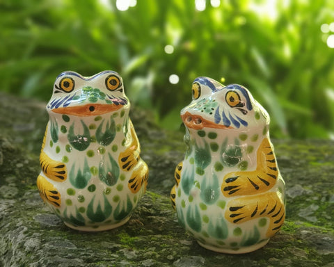 mexican-ceramic-Frog-water animal-decorative-salt-and-pepper-shaker-table top-hand painted-hand crafted-kitchen-eat different