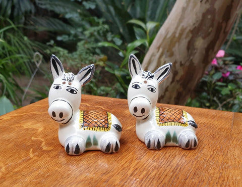 mexican donkey salt and pepper decorative pottery table decor-hand crafted-hand painted-kitchen-eat-different
