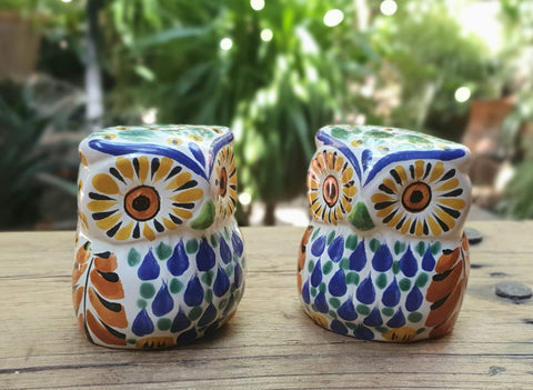 mexican owl salt and pepper decorative pottery table decor-hand crafted-hand painted-kitchen-eat-different