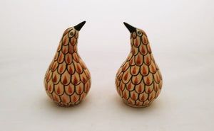 Kiwi Bird Salt and Pepper Shaker Set Terracota Colors