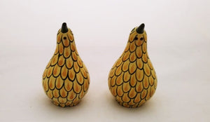 Kiwi Bird Salt and Pepper Shaker Set Yellow Colors