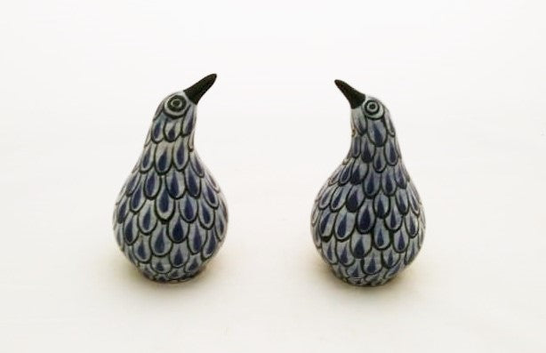 Kiwi Bird Salt and Pepper Shaker Set Blue Colors