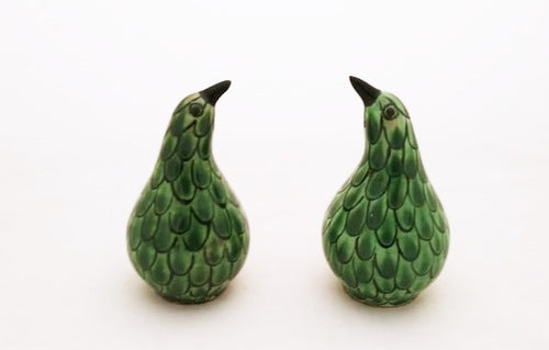 Kiwi Bird Salt and Pepper Shaker Set Green Colors