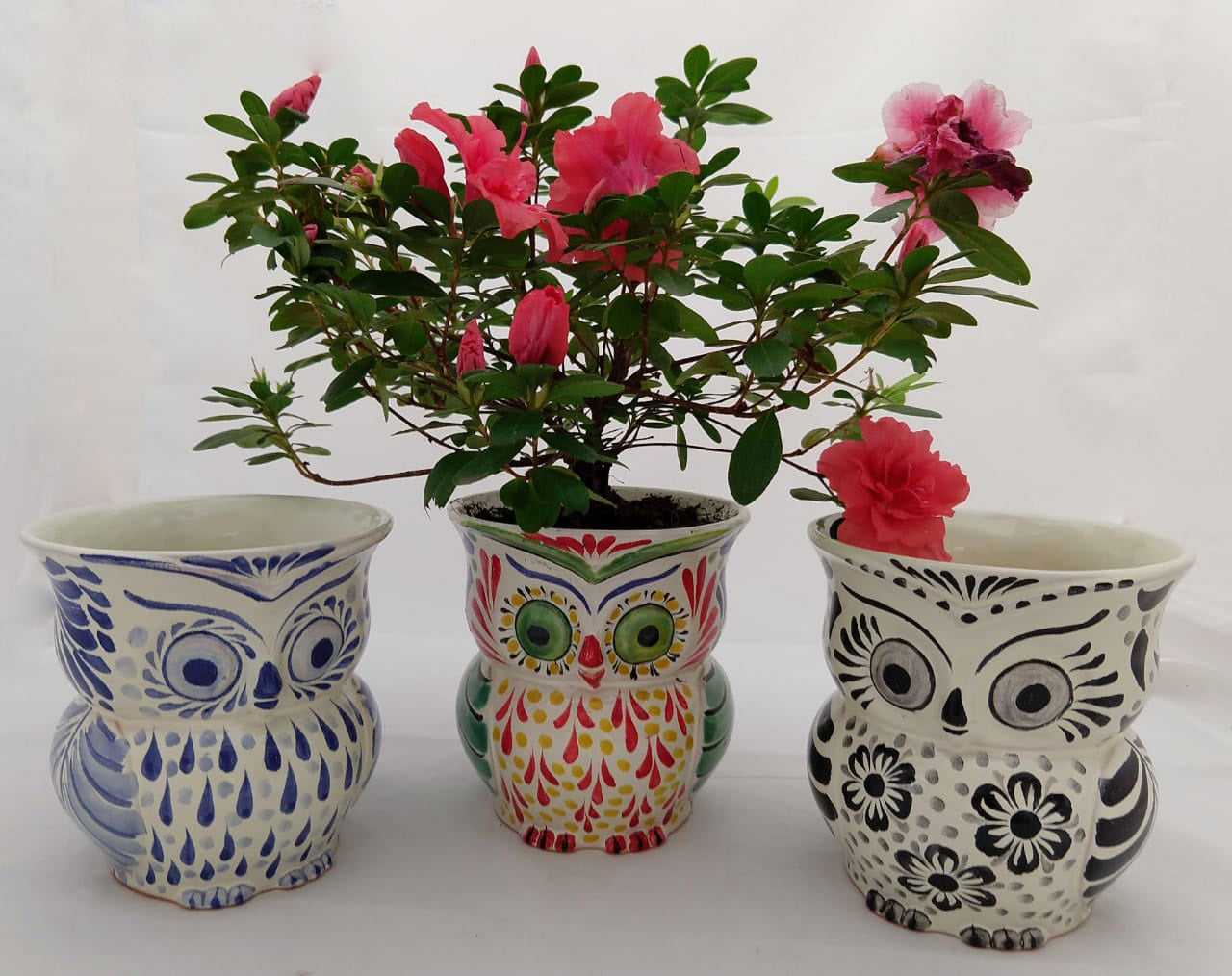 Owl Flower Pot Set (3 pieces) 5.5