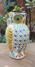 "Owl Water Pitcher 9"" Hight 40 Oz Multicolor"