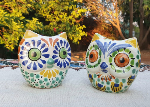 Owl Head Salt and Pepper Shaker Set MultiColors