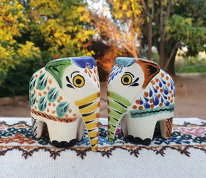Elephant Salt and Pepper Shaker Set MultiColors
