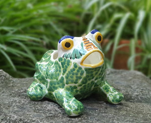 "Frog Shape 6.7"" W x 5.9"" H Flower Pot Multi-colors"