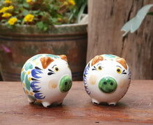 Pig Salt and Pepper Shaket Set MultiColors
