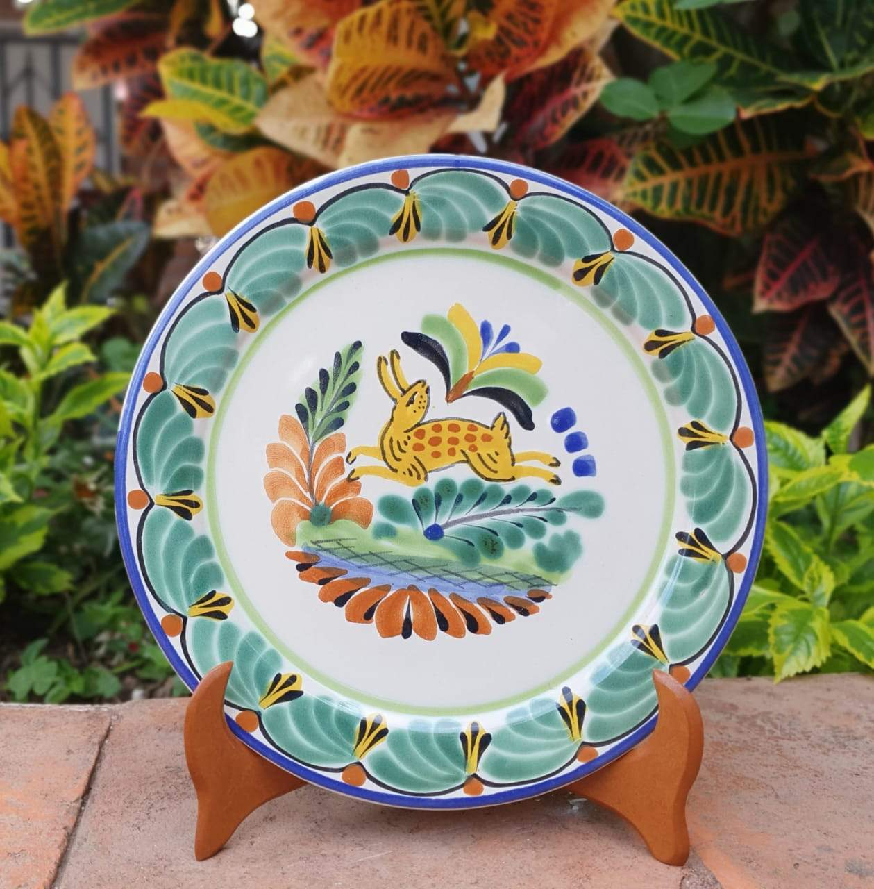 Rabbit Plates Multi-colors