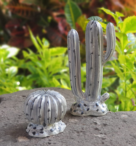Cactus Figures Set Of 2 Pieces Black and White