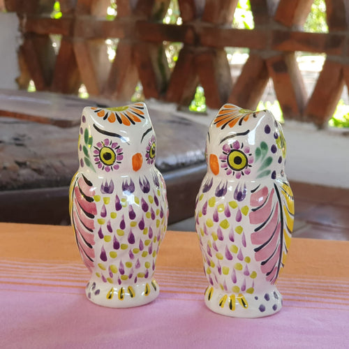 Owl Salt and Pepper Shaker Set of 2 Purple Colors