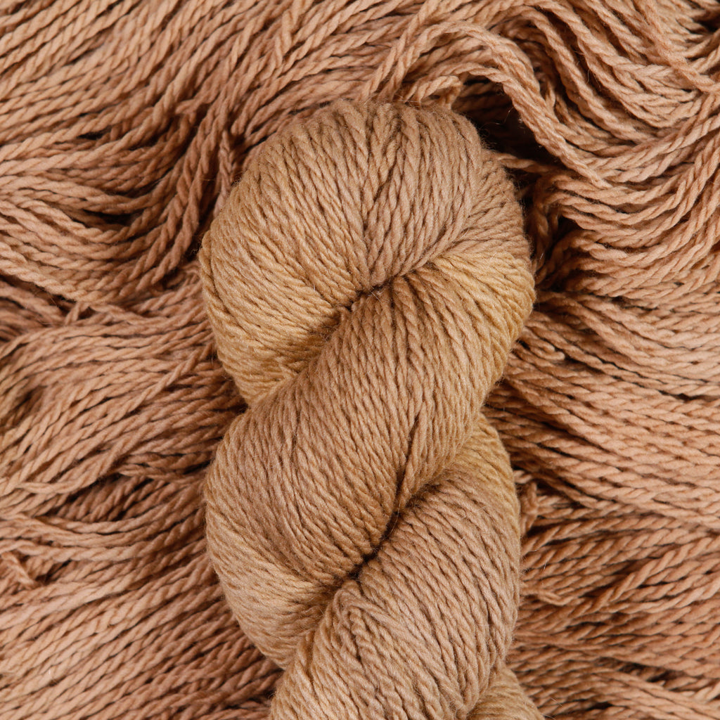 ELDER - Rambouillet Wool - 2ply Light Worsted