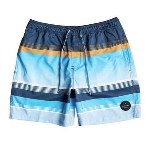 Quicksilver Swell Vision 14 Inch Volley Boys Shorts