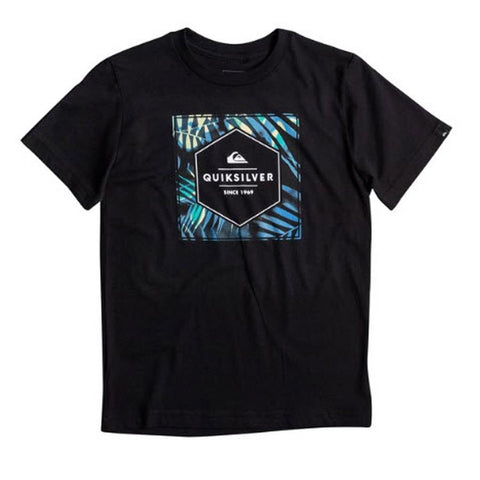 Quicksilver Shady Hex Boys Tees